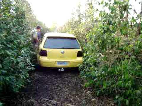 Alfenas Hoje - VW  GOLF furtado  escondido em cafezal - Imagens Henrique Higino