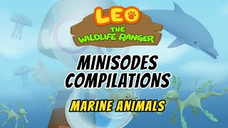 Leo the Wildlife Ranger Season 1 Compilations - Marine Animals