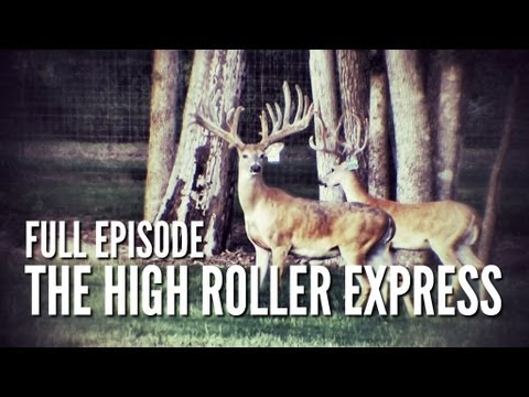 The High Roller Express | Deer & Wildlife Stories