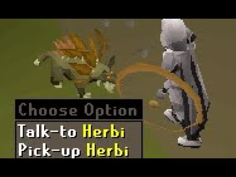 New OSRS Pet and Ancient Wyverns (Fossil Island)
