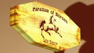 Line Dance LERNVIDEO - WALKING COWBOY - Paradise of Horses LD