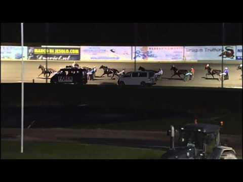 Vidéo de la course PMU PRIX CHEVAL D'OR (ELITE CHALLENGE)