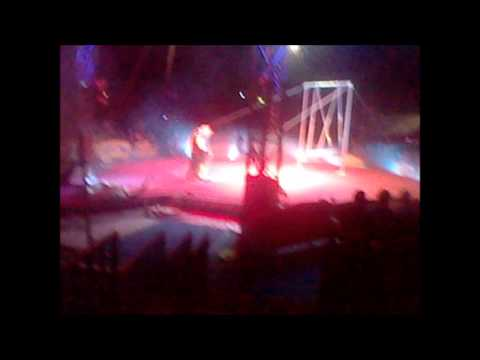 Moscow State Circus photos plus 1 video