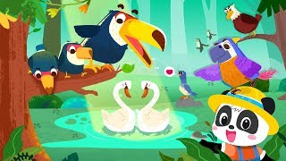 Baby Panda's Bird Kingdom | Learn Animals | Kids Videos | Kids Games | Game Trailer | BabyBus