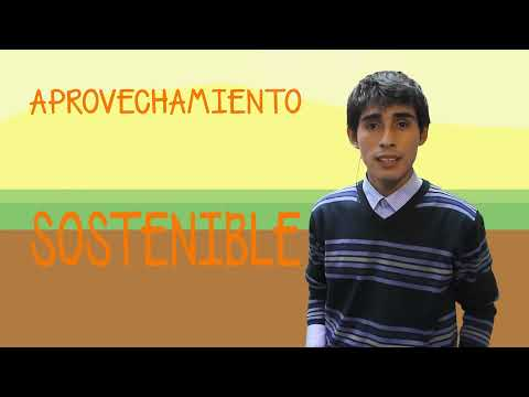 DÍA DEL CAMPESINO PERUANO - ECOZONA TV