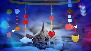 CAT MUSIC - LULLABY FOR CAT OR KITTEN (SOOTHING MUSIC) 1 HOUR 4K