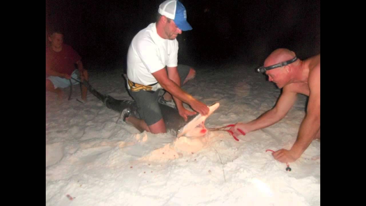 milf varmt hd Panama city Beach