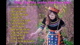 Nguoi Meo On Dang Giang Hoa