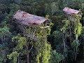 Suku Di Papua Ini Tinggal Di Rumah Pohon Tertinggi Di Dunia 50 Meter mp3
