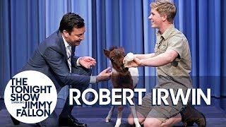 Robert Irwin and Jimmy Bottle Feed a Baby Miniature Horse