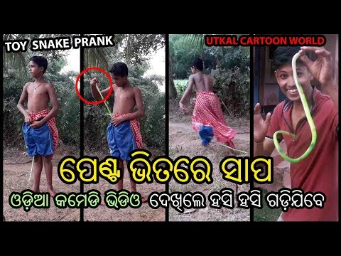 Nakali Sapa Asali Dara || Toy Snake prank video || Odia Funny Video
