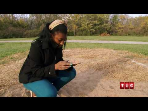 Eating Sand | My Strange Addiction