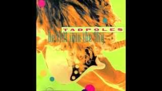 Tadpoles - Liars