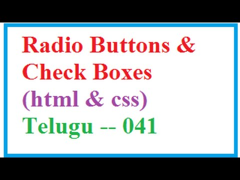 How to Put Radio Buttons and Check Boxes in HTML  --   Telugu 041