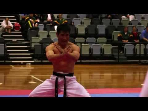 International Martial Arts Games May 2013