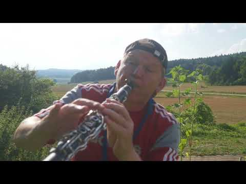 download lagu Little Hollywood - Alle Farben & Janieck Saxophonclarinet Cover gratis