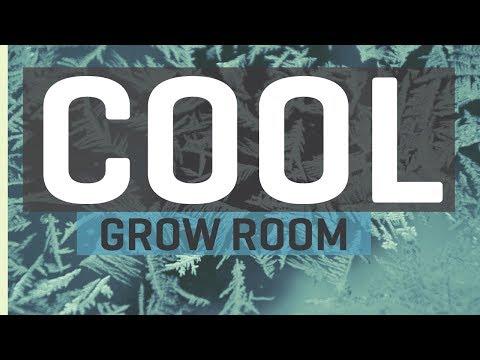 Cool Basement Grow Room Upgrades — New LED Grow Lights