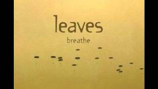Watch Leaves Race video