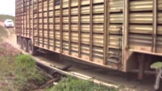 Carreta Boiadeira passando por ponte quebrada no AC #Universitário