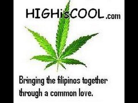 GMA news : SONA Marijuana Philippines ( www.HIGHisCOOL.com)