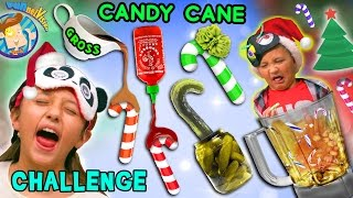 CANDY CANE CHALLENGE w/ Gross and Weird Flavors + Nasty Smoothie Mix  (FUNnel Vision Taste Test Fun)
