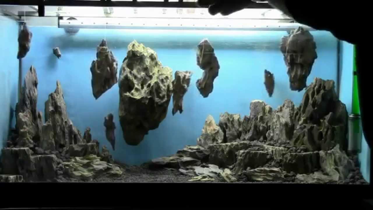 Allestimento Acquario Fantasy Aquarium Setup Aquascape Esercitazioni Jedi Step 1 Youtube
