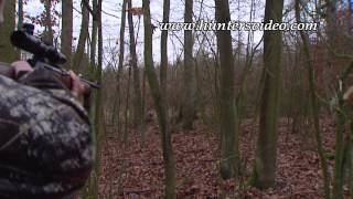 Bunte Strecke in Polen - Hunters Video