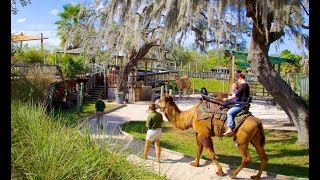 10 Best Tourist Attractions in Tampa, Florida