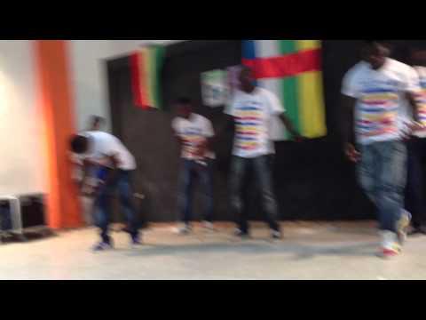 Cesam fes centrafrique 2014 (1ère partie)