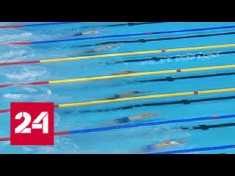 Морозов и Колесников стали чемпионами Европы по плаванию - Россия 24
