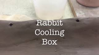 Plan To Keep Rabbits Cool  In Summer