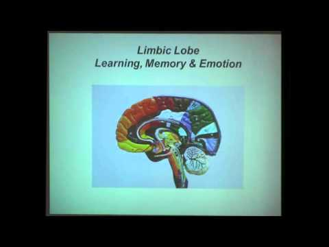 The Neuroscience of Learning and Memory