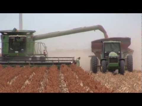 2012 South Texas Grain Sorghum Harvest