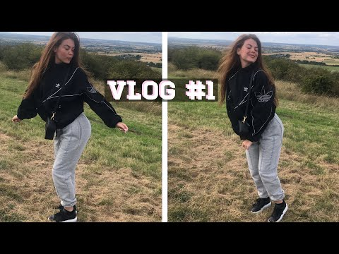ROAD TRIP VLOG , A KITE NEARLY KILLED ME