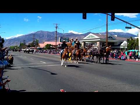Mule Days Parade Bishop Ca. 2012
