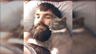 ご主人の髭を愛してやまない猫たち