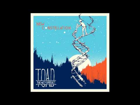 Toad The Wet Sprocket - Rare Bird