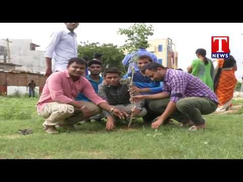 MLA Rekha Naik Participates in Haritha Haram Programme | Adilabad Dist | TNews live Telugu