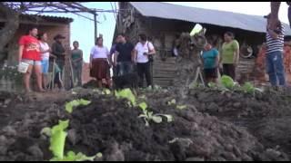 HUERTAS FAMILIARES EN TRINIDAD, COMO PRODUCIR HORTALIZAS EN SU PAOPIA CASA