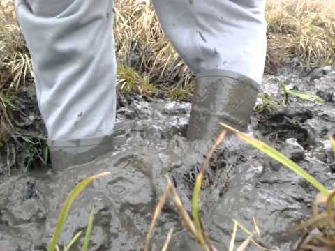 my wellies in mud - stuck