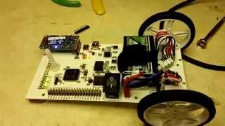 Completed Mechatronics Robot