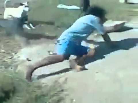 Bêbado lutando contra cachorros