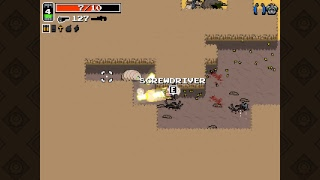 Trying to get to the Nuclear Throne