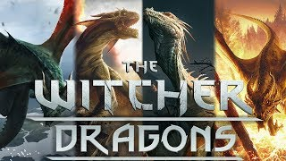 What Are Dragons? - Witcher Lore - Witcher Mythology - Witcher 3 lore - Witcher Monster Lore