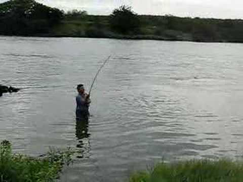 pesca piapara