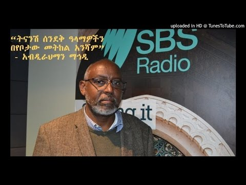 Interview With Abdirahman Mahdi - SBS Amharic