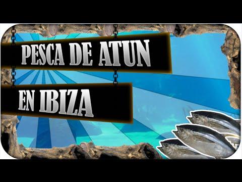 Pesca del atún al currican en Ibiza .