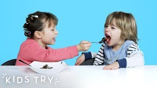 Kids Try Chocolate Dishes from Around the World | Kids Try | HiHo Kids