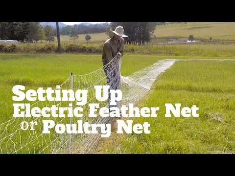 Setting up Electric feather net / poultry net