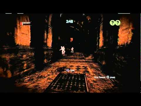 Batman Arkham City Predator Challenge room- natural selection Extreme (catwoman)